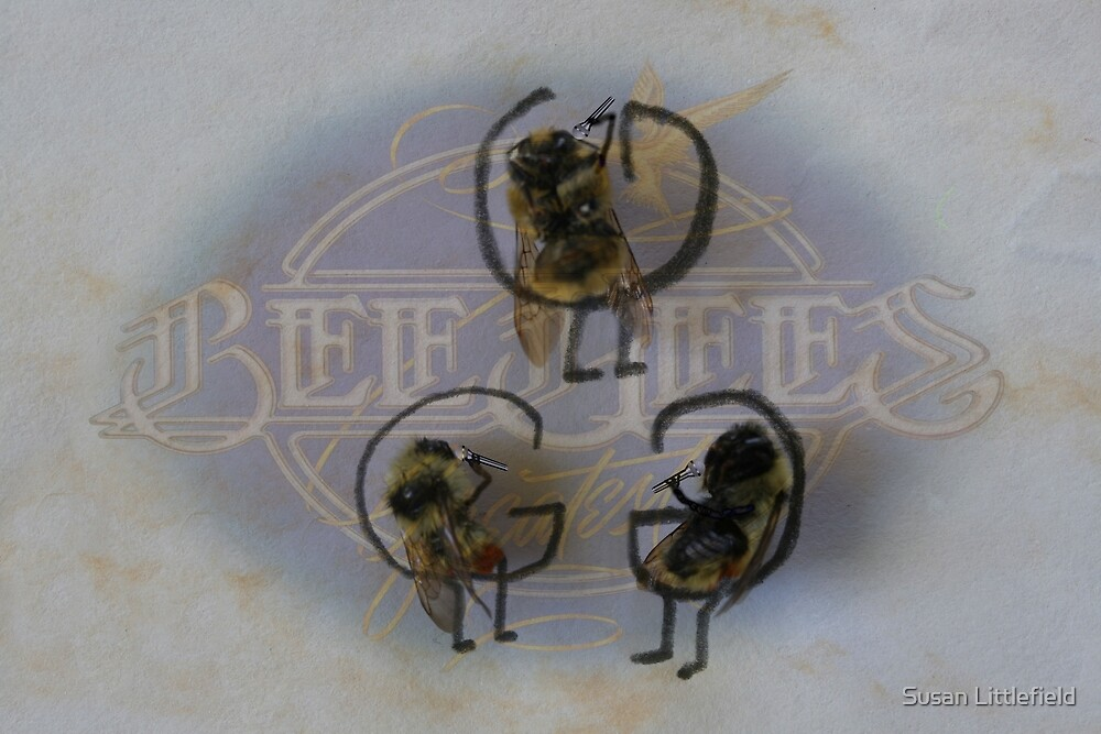 The Bee Gees by Susan Littlefield