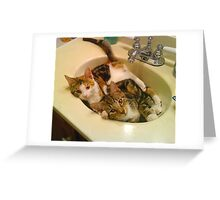 Moire and Mickey at Home Greeting Card