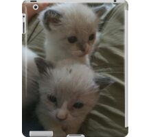 Two Adorable Kittens iPad Case/Skin
