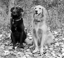 Maggie and Hunter by Jennifer Hulbert-Hortman