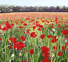 Poppy Fields Painting used for Remembrance Day Song  by Poppy-Art