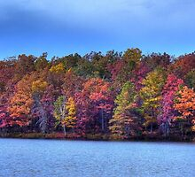 Fall in the Noth East by j9mayer