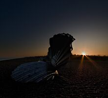 Scallop Sunset by Nigel Bangert