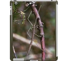 Stick insect Phasme story 9 paint  (c)(t) by Olao-Olavia / Okaio Créations fz 1000 iPad Case/Skin
