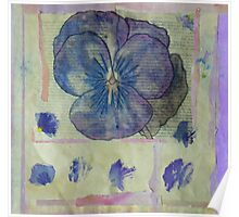 Pansy Collage Poster