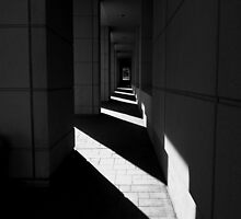 Federal Courthouse by Barbara Morrison