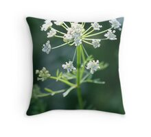 Cow parsley close up Throw Pillow