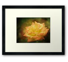Pretty Is As Pretty Does Framed Print