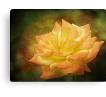 Pretty Is As Pretty Does Canvas Print