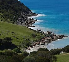 Pink Bay near Cape Willoughby - Kangaroo Island, South Australia by Dan & Emma Monceaux