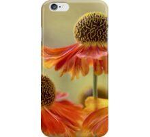 Helenium sunset iPhone Case/Skin