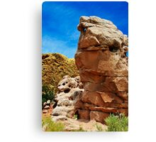 Turquoise Trail Canvas Print
