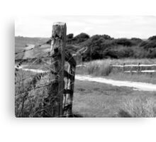 The gate to anywhere Canvas Print