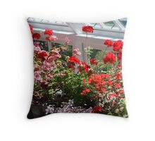 Geraniums in the glasshouse Throw Pillow
