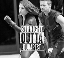 Hawkeye and Black Widow Straight Outta Budapest by phanassemble