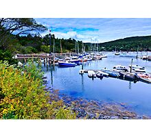 Maine Harbor Photographic Print