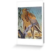 Wedge Tailed Eagle - bird of prey - Australia Greeting Card