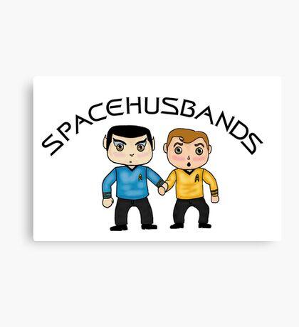 space husbands Canvas Print