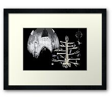 Studly spent hours wondering where to put the fairy... Framed Print