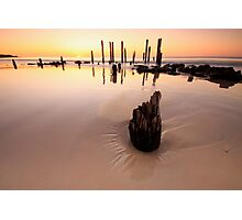 Pt Willy Photographic Print