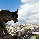 Cimera of Notre-Dame - Paris, France  by Dev Wijewardane