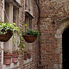 bricks and flowers by Mike van der Hoorn
