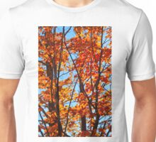 Vermont Red Maples Unisex T-Shirt