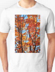 Vermont Red Maples T-Shirt