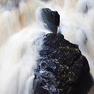 Hermitage Falls  by Lee-Anne Wilson