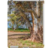 Nature's Relics iPad Case/Skin