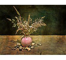 Grasses and Stones Photographic Print