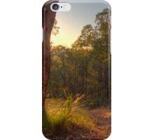 Jorgensen Park Trail iPhone Case/Skin