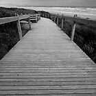 Sandy Point Boardwalk by Will Hore-Lacy