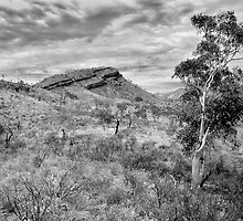 Carr Boyd Ranges, Western Australia by Andrew Brooks