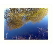 Blue Willow Art Print