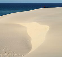 Sands of Fraser Island by Igor Makunin