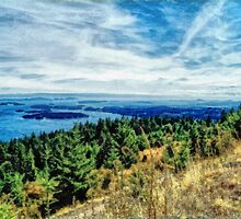 Gulf Island View (painted) by James Zickmantel