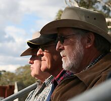 Spectators at the Yard Dog Trials by aussiebushstick