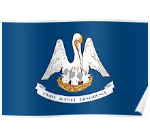 State Flags of the United States of America -  Louisiana Poster