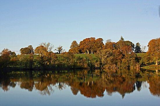 Derries Lake in Autumn #2 by Julesrules