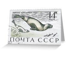 Marine Fauna series The Soviet Union 1971 CPA 4041 stamp Ribbon Seals cancelled  USSR Greeting Card
