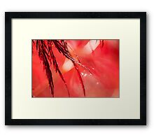Shimmering Red Framed Print