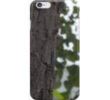 Lifetime iPhone Case/Skin