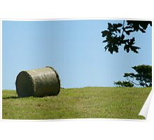 Round haybale in the fields Poster
