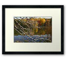 Stark Vista Framed Print