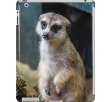 Huh? What'd you Say?? iPad Case/Skin
