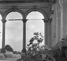 Witley Court Orangery by Matthew Walters
