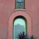 San Diego House For Sale by Rozalia Toth
