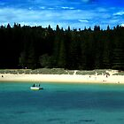 Summer Day At Emily Bay Norfolk Island by Ian Mooney