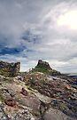 Holy Island Castle  by Nigel Bangert
